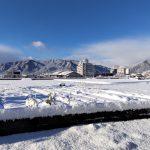 揖斐川町の雪景色
